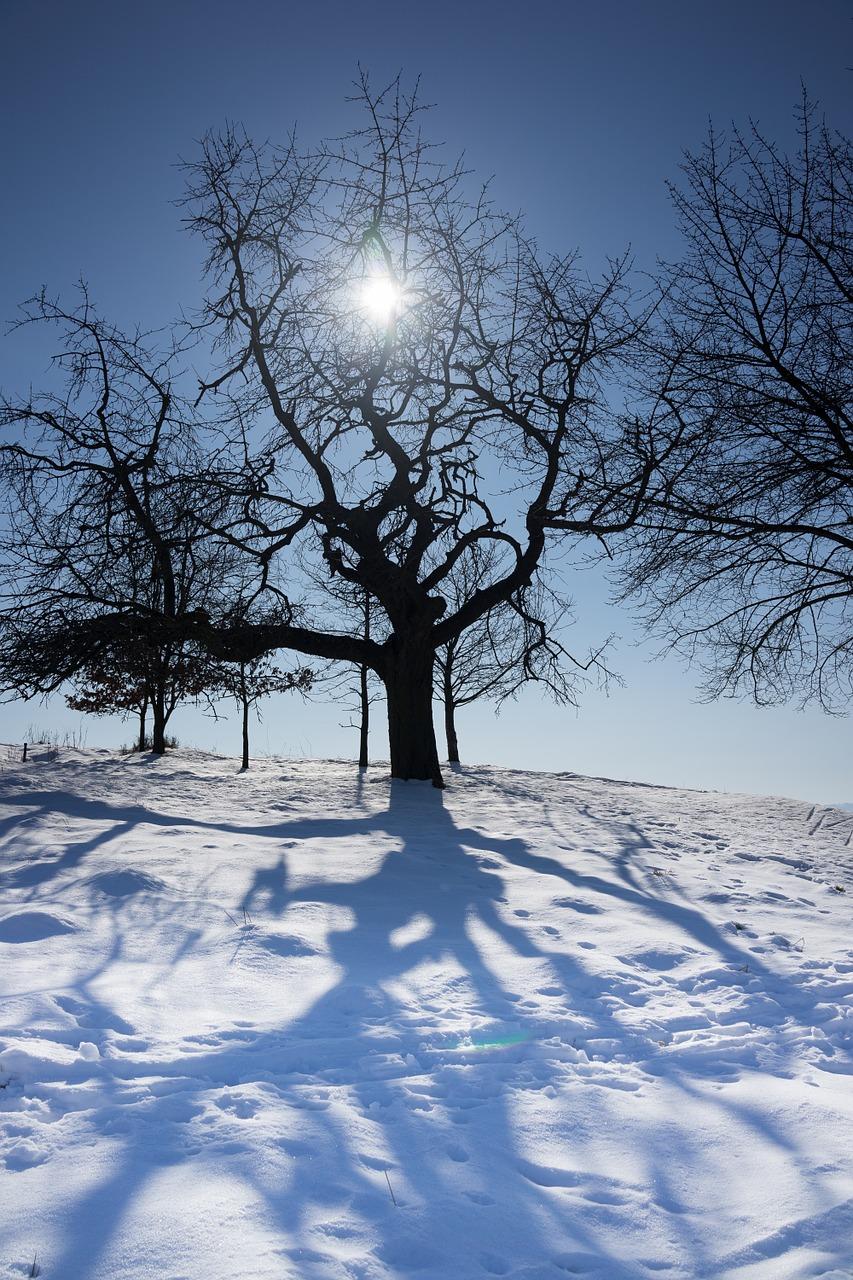 зимнее солнцестояние фото 2