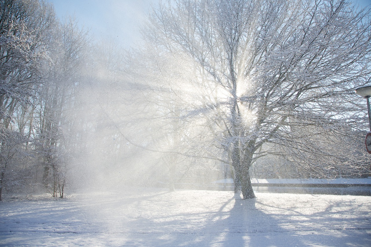 зимнее солнцестояние фото