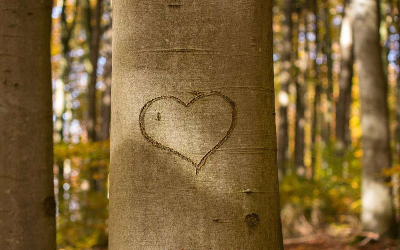 Открытки к дню влюбленных 5