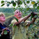 Фермеры Белгородской области Игорь и Светлана Шмальц: сады не плодоносят без любви